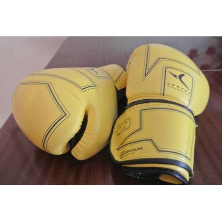 Gants de boxe FKT180